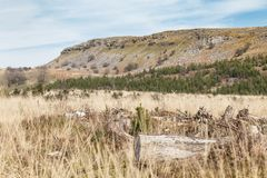 Το Brecon οδηγεί το τοπίο στην πρώιμη άνοιξη στην Ουαλία, UK στοκ φωτογραφία με δικαίωμα ελεύθερης χρήσης