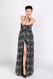 Το brunette σε ένα μακρύ φόρεμα Στοκ εικόνες με δικαίωμα ελεύθερης χρήσης