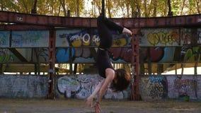 Το brunette στα σφιχτά ενδύματα γυρίζει την άνω πλευρά - κάτω στο δαχτυλίδι για το εναέριο acrobatics απόθεμα βίντεο