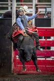 Το Bull με τον αναβάτη παίρνει αερομεταφερόμενο Στοκ Εικόνες