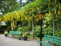 Το Butchard καλλιεργεί είσοδος Στοκ Φωτογραφίες