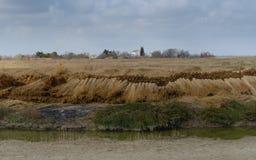 Το Camargue Provençal Camarga, ένας φυσικός τοποθετημένος περιοχή νότος Arles, Γαλλία στοκ φωτογραφία με δικαίωμα ελεύθερης χρήσης