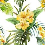Το canna Watercolor ανθίζει το σχέδιο διανυσματική απεικόνιση