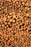 Το Choped ξύλινο συνδέεται τη σύσταση Στοκ φωτογραφία με δικαίωμα ελεύθερης χρήσης