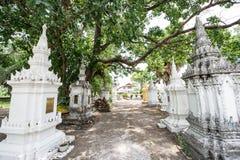 Το cinerary δοχείο σε Wat Phra Yuen Στοκ Εικόνα