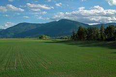Το Creston καλλιεργεί Π.Χ., Καναδάς. στοκ φωτογραφία με δικαίωμα ελεύθερης χρήσης