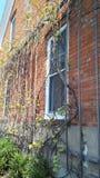 Το cWho είναι στη πίσω πόρτα μου Στοκ φωτογραφίες με δικαίωμα ελεύθερης χρήσης