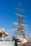 Το Dar Pomorza Στοκ φωτογραφία με δικαίωμα ελεύθερης χρήσης