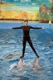 Το Dolphinarium Στοκ Εικόνες
