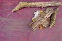 Το Driftwood και ένα επίπεδος-οδηγημένο μη αλκοολούχο ποτό μπορούν Στοκ Φωτογραφία