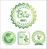 Το Eco ονομάζει το βιο πρότυπο Θέμα οικολογίας Στοκ Εικόνα