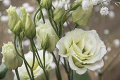 Το Eustom κινεζικά αυξήθηκε χαριτωμένη ανθοδέσμη των λουλουδιών Στοκ φωτογραφίες με δικαίωμα ελεύθερης χρήσης