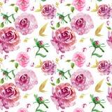 Το Floral άνευ ραφής σχέδιο Watercolor με burgundy τα τριαντάφυλλα με τα χρυσά φύλλα και ρόδινος αυξήθηκε οφθαλμοί διανυσματική απεικόνιση