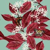 Το Floral άνευ ραφής σχέδιο με τα λουλούδια και το κόκκινο βγάζει φύλλα Στοκ Φωτογραφίες