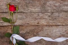 Το Floral πλαίσιο φιαγμένο από κόκκινο αυξήθηκε Στοκ Φωτογραφίες