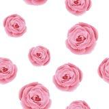 Το Floral σχέδιο με αυξήθηκε Στοκ εικόνα με δικαίωμα ελεύθερης χρήσης