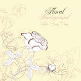 Το Floral υπόβαθρο με τα pansies και αυξήθηκε Στοκ Εικόνα