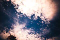 Το Floutist στο φαράγγι Boynton Στοκ εικόνες με δικαίωμα ελεύθερης χρήσης