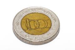 Το forint σημάδι: FT  κώδικας: Το HUF είναι το νόμισμα της Ουγγαρίας Νομίσματα στο απομονωμένο άσπρο υπόβαθρο Στοκ φωτογραφία με δικαίωμα ελεύθερης χρήσης