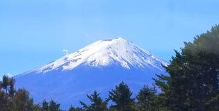 το fuji επικολλά στοκ φωτογραφία