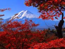 το fuji επικολλά στοκ φωτογραφία με δικαίωμα ελεύθερης χρήσης
