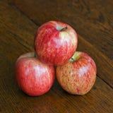 το gala μήλων συσσώρευσε τρί&al Στοκ εικόνες με δικαίωμα ελεύθερης χρήσης
