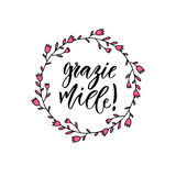 Το Grazie miele σας ευχαριστεί πάρα πολύ στα ιταλικά Εμπνευσμένο γράφοντας αφίσα ή έμβλημα Διανυσματική εγγραφή χεριών Στοκ εικόνες με δικαίωμα ελεύθερης χρήσης