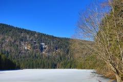 Το Grosser Arber βλέπει, χειμερινό τοπίο γύρω από Bayerisch Eisenstein, χιονοδρομικό κέντρο, Βοημίας δάσος (Šumava), Γερμανία Στοκ φωτογραφίες με δικαίωμα ελεύθερης χρήσης