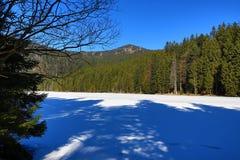 Το Grosser Arber βλέπει, χειμερινό τοπίο γύρω από Bayerisch Eisenstein, χιονοδρομικό κέντρο, Βοημίας δάσος (Šumava), Γερμανία Στοκ εικόνες με δικαίωμα ελεύθερης χρήσης