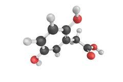 Το Homogentisic οξύ είναι ένα φαινολικό οξύ που βρίσκεται στο unedo Arbutus (στρεπτόκοκκος Στοκ Φωτογραφία