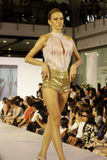 το italiana μόδας accademia φ συνεργάζεται Στοκ φωτογραφία με δικαίωμα ελεύθερης χρήσης