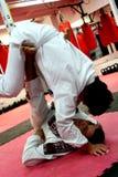 το jujitsu ρίχνει Στοκ Εικόνα