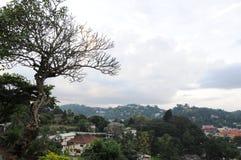 Το Kandy είναι πόλη στο κεντρικό μέρος της Σρι Λάνκα, μια από τις αρχαίες πρωτεύουσες του νησιού Συμπεριλαμβανόμενος στον κατάλογ στοκ εικόνες