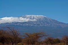 το kilimanjaro επικολλά Στοκ εικόνες με δικαίωμα ελεύθερης χρήσης