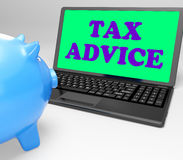 Το lap-top φορολογικών συμβουλών παρουσιάζει επαγγελματία που συμβουλεύει για τη φορολογία Στοκ φωτογραφίες με δικαίωμα ελεύθερης χρήσης