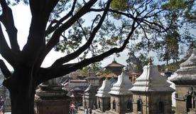Το Lingams στο ναό Pashupatinath στο Κατμαντού στοκ φωτογραφία με δικαίωμα ελεύθερης χρήσης