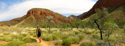 Το MacDonnell κυμαίνεται το εθνικό πάρκο, Βόρεια Περιοχή, Αυστραλία Στοκ Φωτογραφίες
