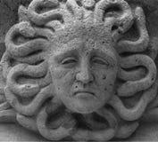 Το medusa κεφάλι Στοκ Εικόνες