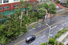 Το meranti τυφώνα που προσγειώνεται μέσα η πόλη, Κίνα Στοκ εικόνα με δικαίωμα ελεύθερης χρήσης