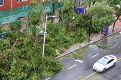 Το meranti τυφώνα που προσγειώνεται μέσα η πόλη, Κίνα Στοκ φωτογραφίες με δικαίωμα ελεύθερης χρήσης