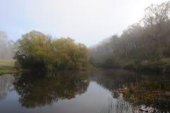 Το misty πρωί Στοκ Εικόνα