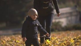 Το Mom και ο νέος γιος λούζουν στα φύλλα σε ένα πάρκο φιλμ μικρού μήκους