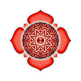 Το Muladhara Chakra Mandala Διανυσματική απεικόνιση