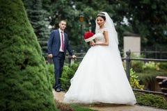Το Newlywed valentynes που θέτει σε ένα ρομαντικό ευρωπαϊκό πάρκο με αυξήθηκε Στοκ φωτογραφίες με δικαίωμα ελεύθερης χρήσης