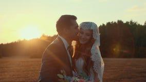Το Newlyweds σε έναν τομέα στη θερινή ημέρα ηλιοβασιλέματος, αγκαλιάζει και φιλά το ένα το άλλο απόθεμα βίντεο