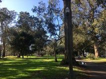 Το Panhandle, χρυσό πάρκο πυλών, φως πεζοδρομίων στοκ εικόνες
