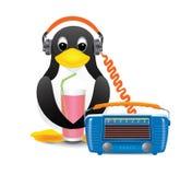 Το Penguin ακούει τη σόδα μουσικής και κατανάλωσης μέσω ενός αχύρου Στοκ Εικόνες