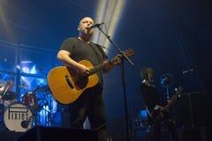 Το Pixies (8) Στοκ Εικόνα