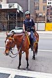 Το Policeofficer οδηγά το άλογό του Στοκ Φωτογραφία
