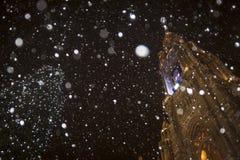 Το Rathaus της Βιέννης χιονίζοντας Στοκ Εικόνες